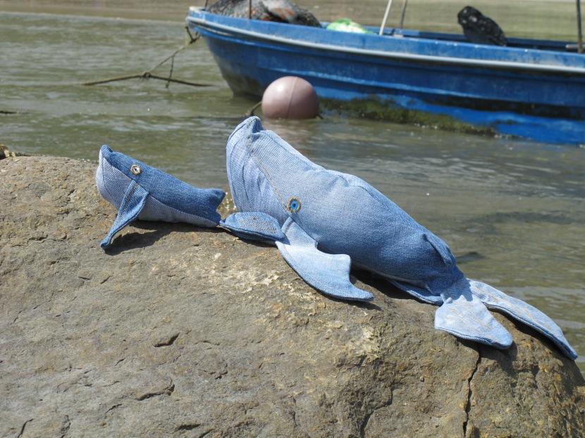 Les baleines en Levi's à laplage!